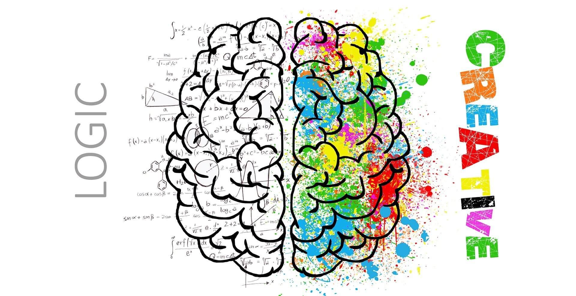 Gehirn: kreativ-logisch